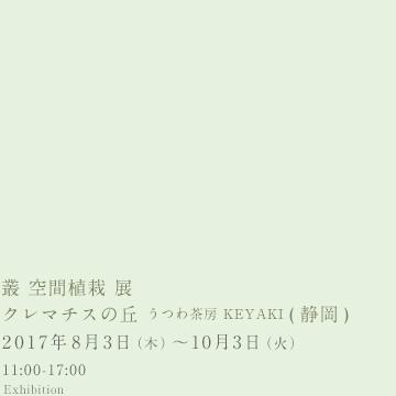 叢  空間植栽 展 @ クレマチスの丘  うつわ茶房 KEYAKI (静岡)