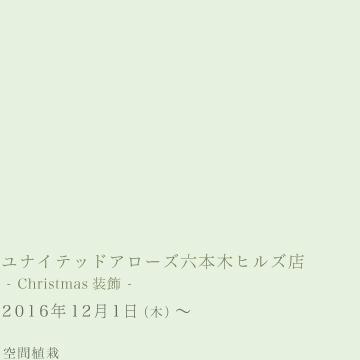 ユナイテッドアローズ六本木ヒルズ店  – Christmas装飾 -