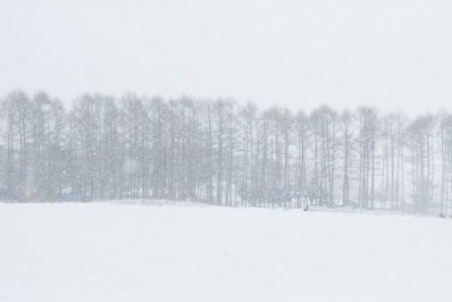 雪国をはしる2